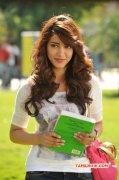 Latest Albums Tamil Actress Shruthi Haasan 431