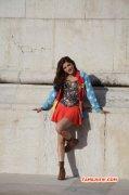 Latest Gallery Shruthi Haasan Film Actress 7769
