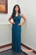 Latest Picture Shruthi Haasan Tamil Actress 8317