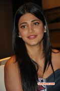 Movie Actress Shruthi Haasan New Galleries 3478