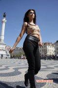 New Photos Shruthi Haasan Actress 1209