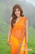 New Pic Heroine Shruthi Haasan 9733