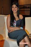 New Stills Shruthi Haasan Movie Actress 5492
