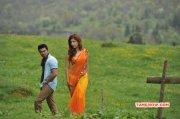 Pictures Indian Actress Shruthi Haasan 7728