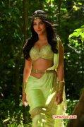 Recent Galleries Shruthi Haasan South Actress 5297