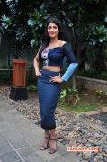 Recent Pictures Cinema Actress Shruthi Haasan 1021