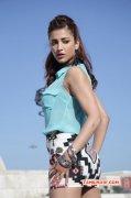 Shruthi Haasan Film Actress Photos 1230