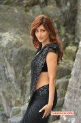 Shruthi Haasan Indian Actress Gallery 233