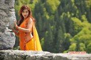 Shruthi Haasan Jul 2015 Pictures 2084