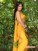 Shruthi Haasan New Still From Puli Actress New Photo 625