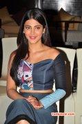 Shruthi Haasan Tamil Actress Latest Gallery 447