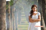 Shruthi Haasan Tamil Movie Actress 2015 Stills 6612