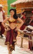 Shruthihaasan Hot In Selvandhan Actress Pic 220