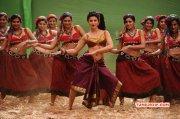 Shruthihaasan Hot In Selvandhan Image 292