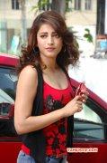 Still Shruthi Haasan Indian Actress 6659