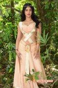 Tamil Actress Shruthi Haasan 2015 Wallpaper 2094