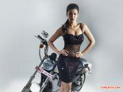 Tamil Actress Shruthi Haasan 5151