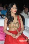 Tamil Heroine Shruthi Haasan Oct 2014 Albums 8450