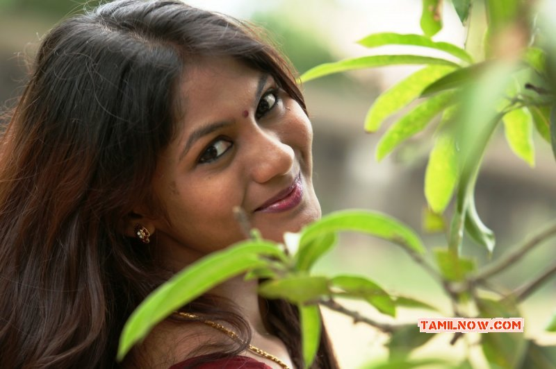 Dec 2015 Gallery Tamil Movie Actress Shruthi Reddy 1186