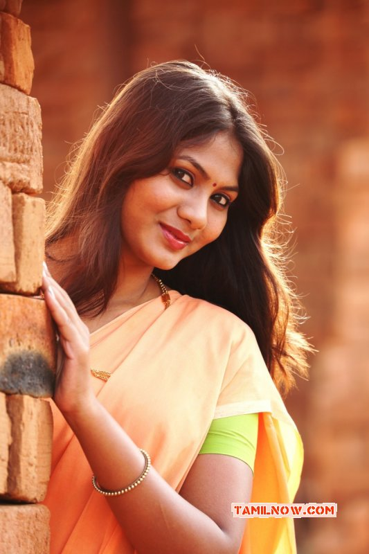 Latest Wallpaper Tamil Actress Shruthi Reddy 4228