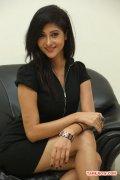 Actress Sindhu Affan 8533