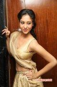Recent Still Actress Sindhu Affan 1604