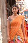 Actress Sneha 7997
