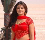 Actress Sneha 839