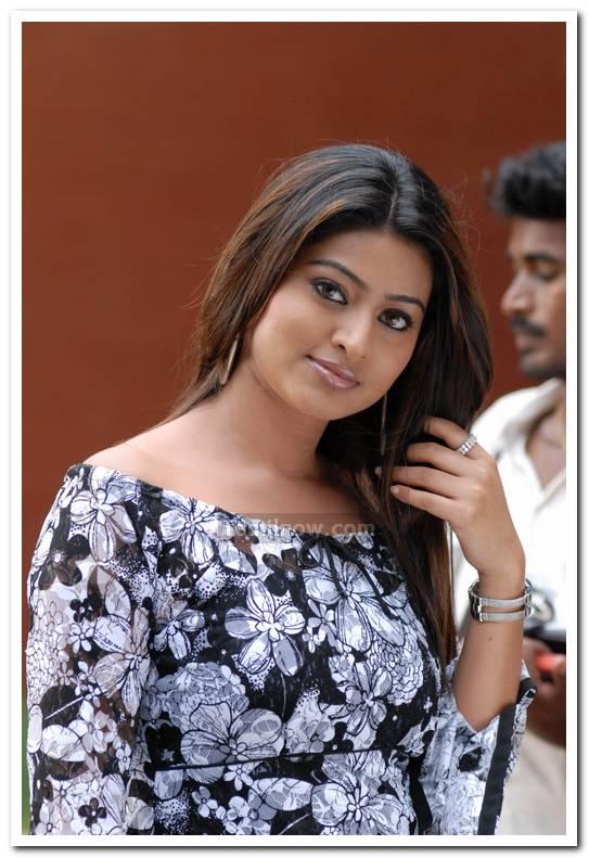 Actress Sneha Photo9