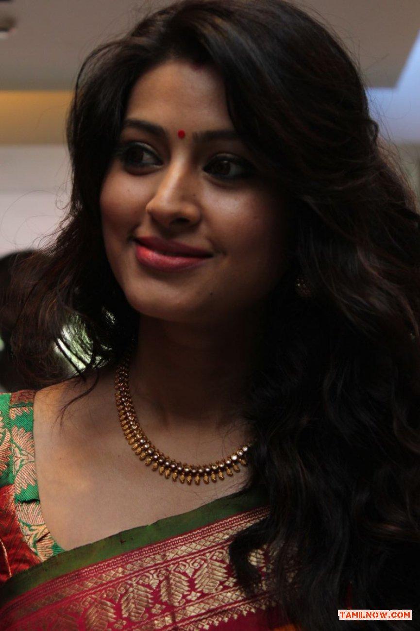 Tamil Actress Sneha Photos 3460