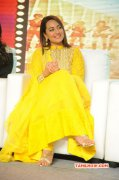 2014 Pictures Film Actress Sonakshi Sinha 9596
