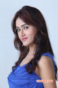Sony Charishta Movie Actress Latest Photos 869