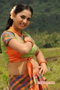 New Still Tamil Actress Srushti Dange 6166