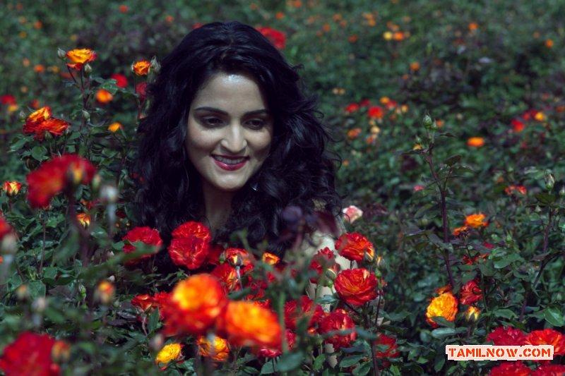 Tamil Actress Sukratha Wagle Stills 7662
