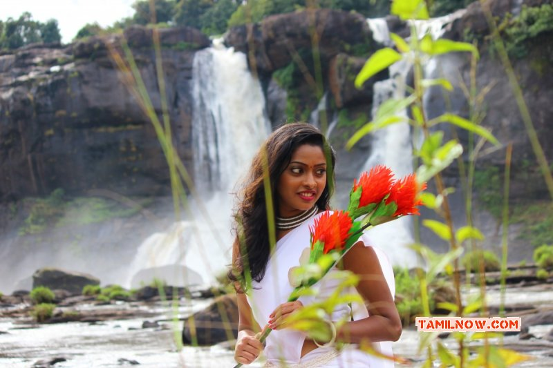 Aug 2017 Album Sunulakshmi Tamil Movie Actress 1876