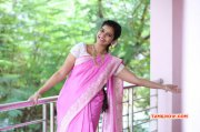Actress Gallery Swathi Reddy In Saree 926