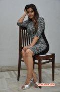 Aug 2015 Pic Swati Reddy Movie Actress 8990