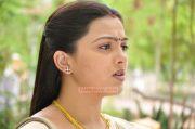 Actress Swetha 9201