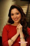 2015 Galleries Cinema Actress Tamanna 9437