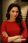 2015 Galleries Tamanna Film Actress 7431