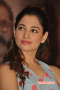 2015 Photo Tamanna Film Actress 6477