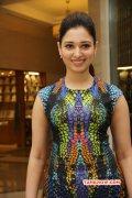 2015 Still Actress Tamanna 1920