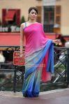 Actress Tamanna 1719