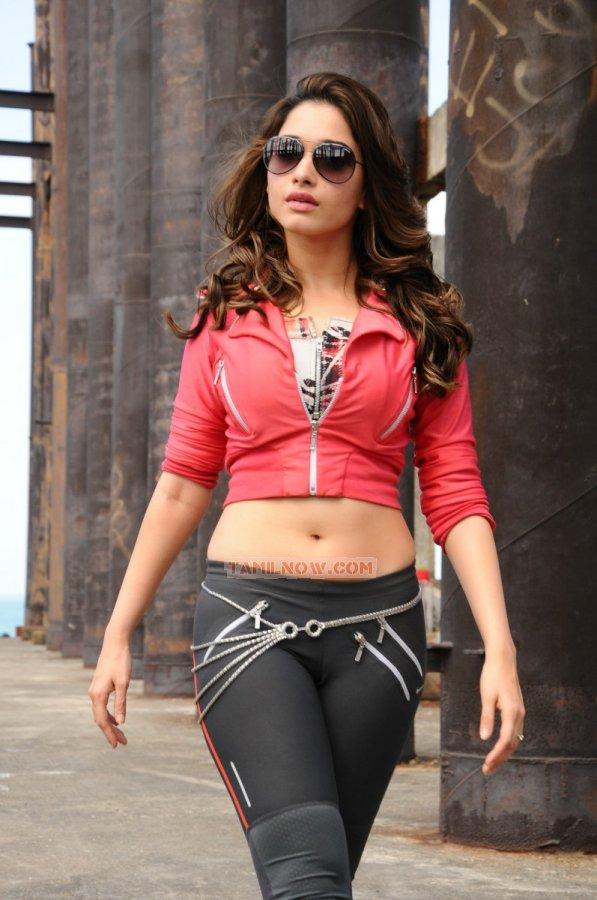 Actress Tamanna 2547