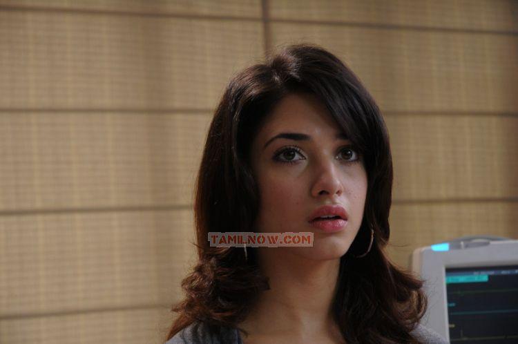 Actress Tamanna 3730