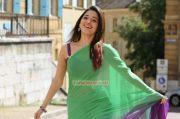 Actress Tamanna 8654