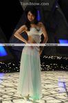 Actress Tamanna New Hot Stills1