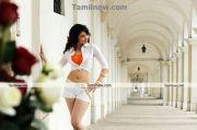 Actress Tamanna New Hot Stills16