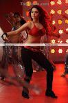 Actress Tamanna New Hot Stills8