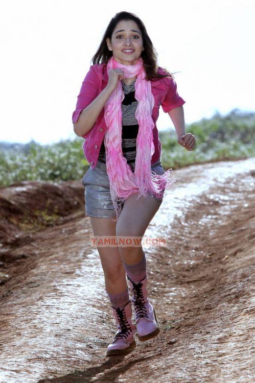 Actress Tamanna Photos 1410
